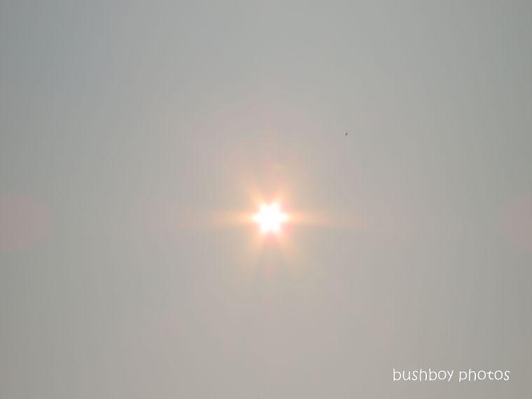sun_smoke_fire_named_home_jackadgery_nov 2019