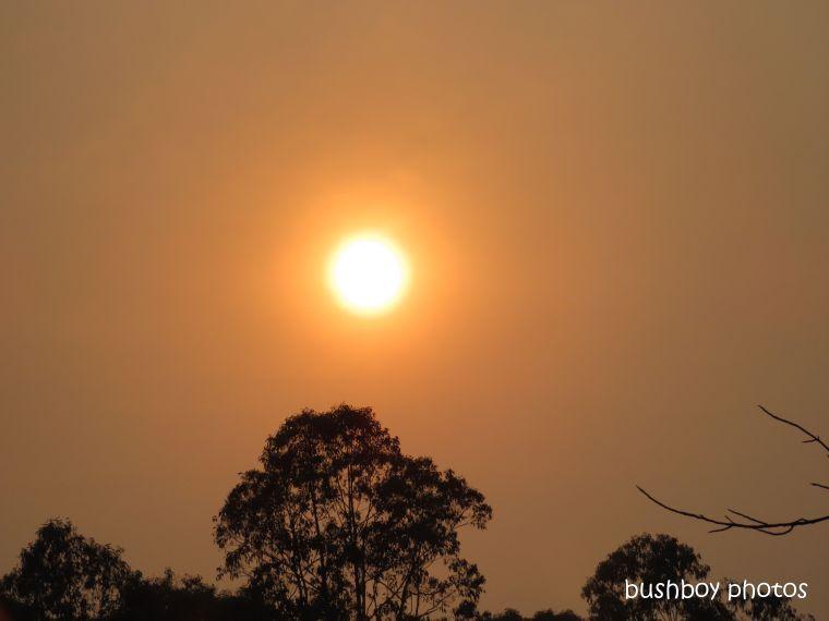 sunrise_fire_orange_named_home_jackadgery_nov 2019