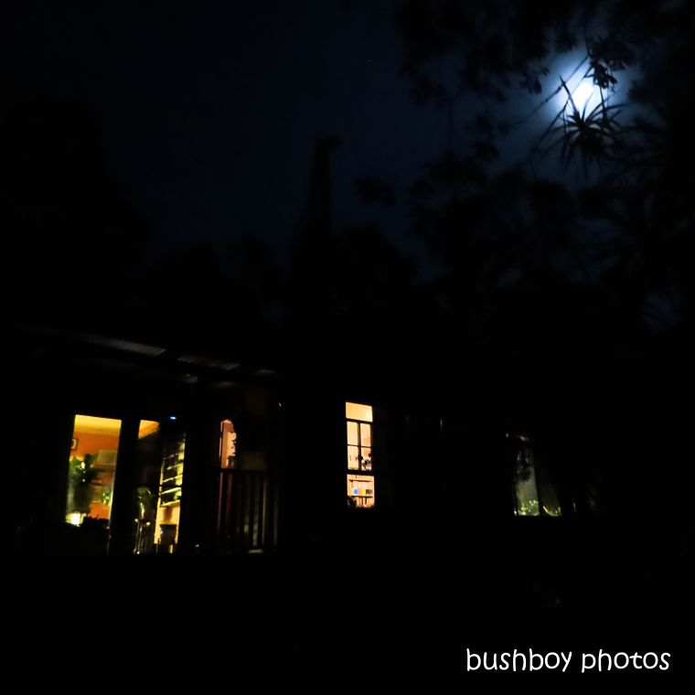 20200118_blog challenge_light_house lights_moonlight