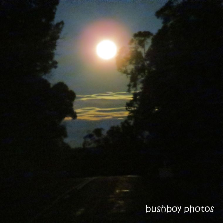 2020103_blog challenge_light_moon_clouds