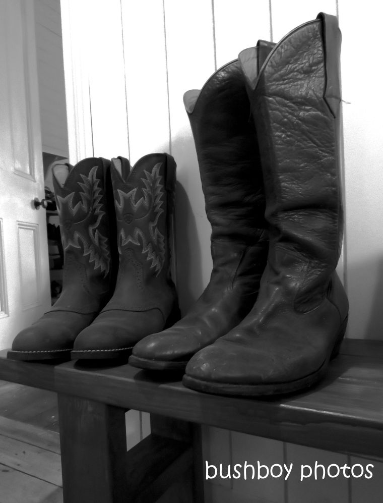 20200201_blog challenge_still life_rural_boots_black and white