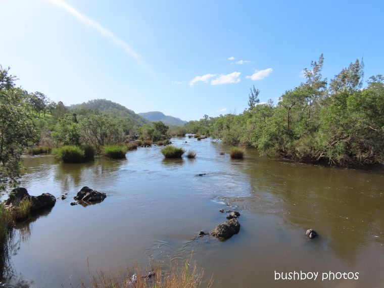 20200322_blog challenge_river_clarence river_carnham_upstream
