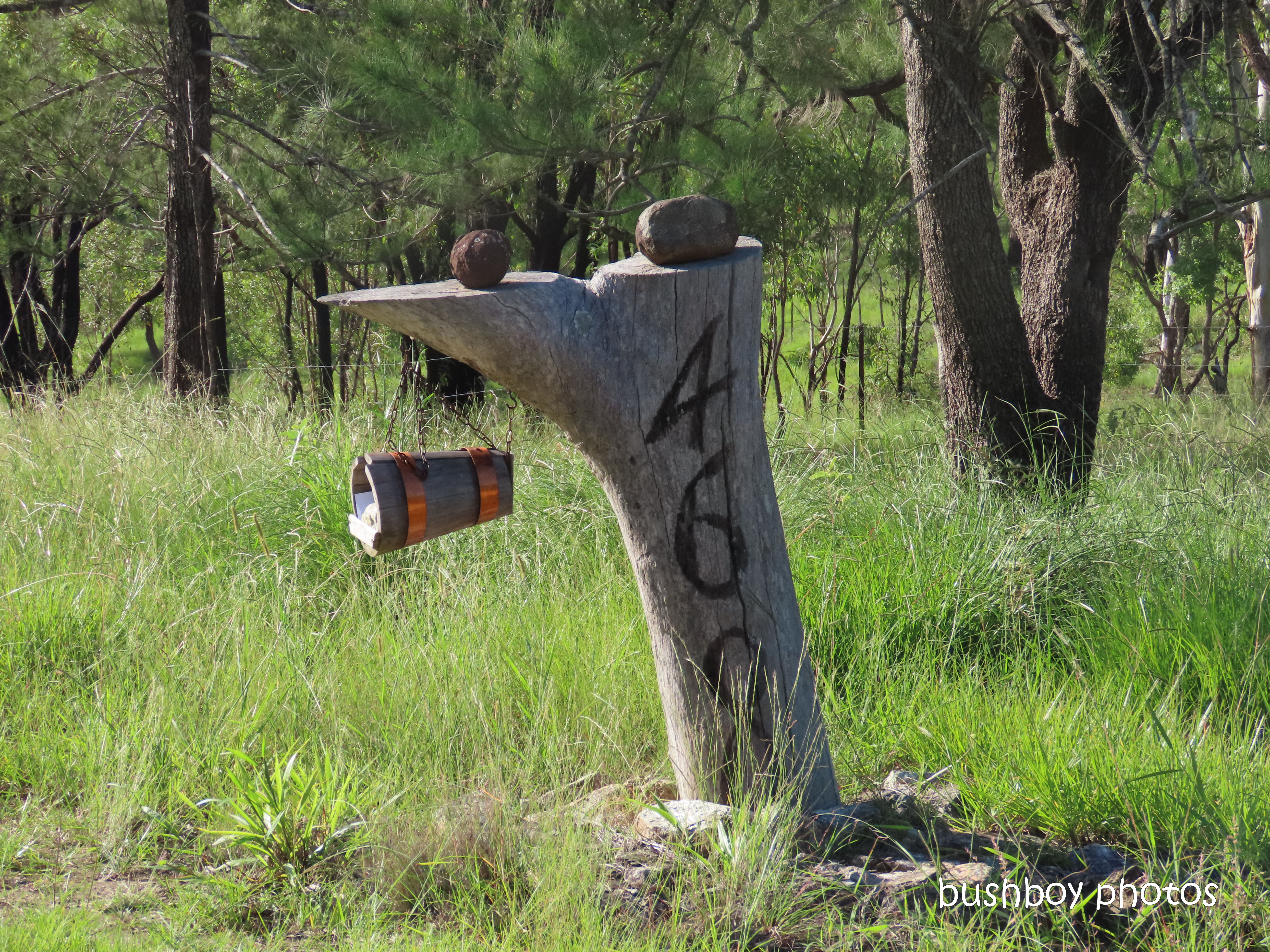20200326_3_blog challenge_diary_letter box_clarence valley