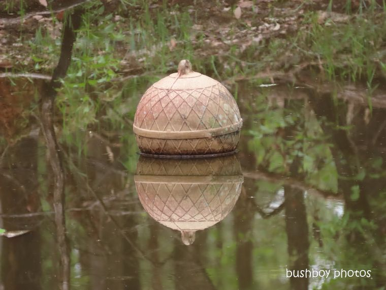 float_ball_dam_reflection_named_home_jackadgery_feb 2020