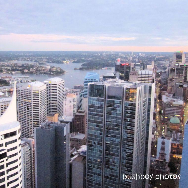 2020411_blog challenge_top_sydney