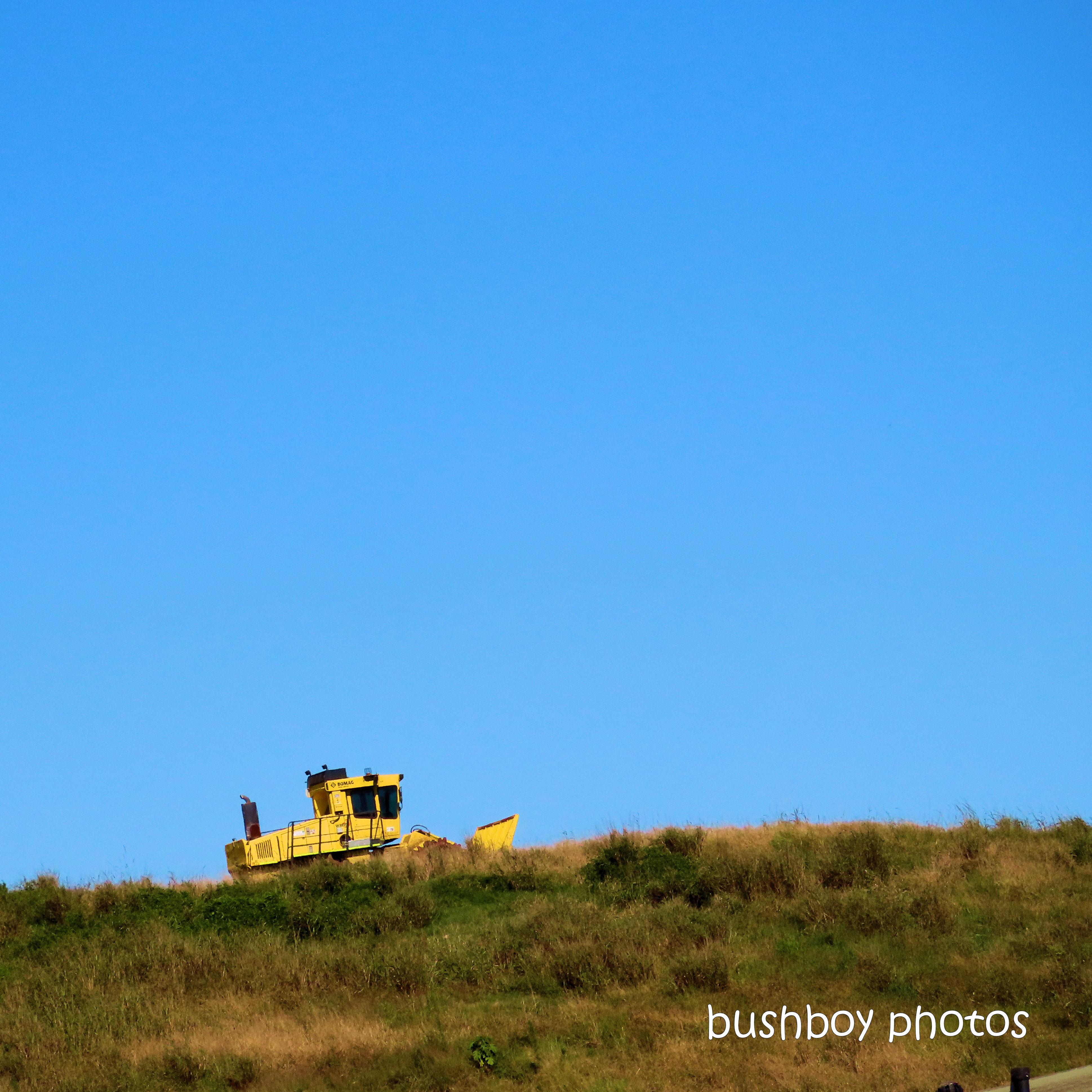 2020419_blog challenge_top_yellow_excavator_lismore tip