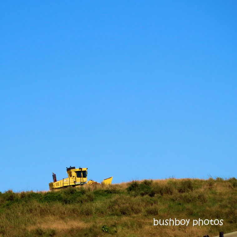 2020419_blog challenge_top_yellow_excavator_lismore tip
