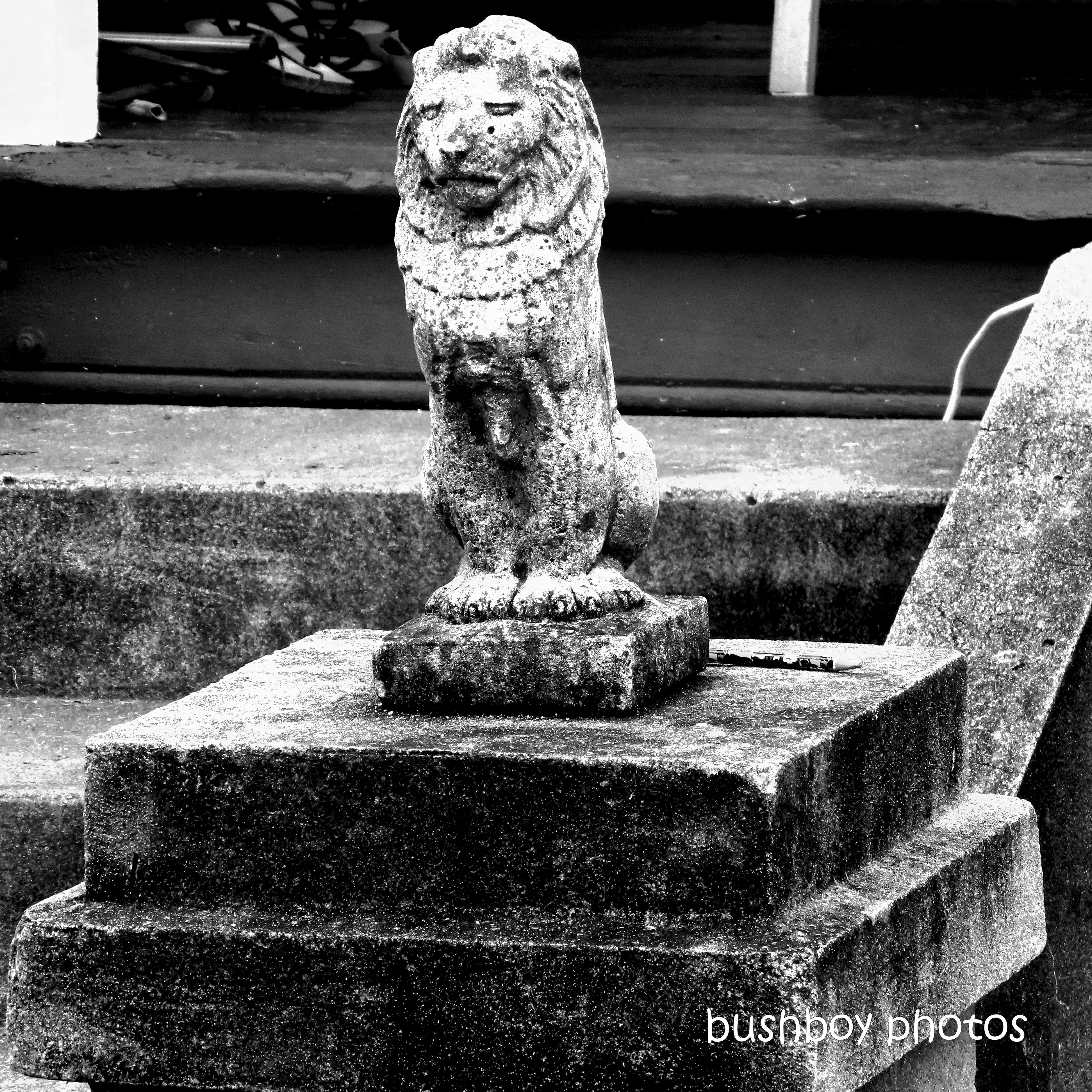 2020420_blog challenge_top_lion_statue_grafton
