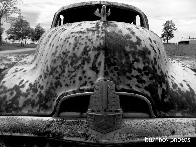 202005508_blog_challenge_blackandwhite_rust_car_holden